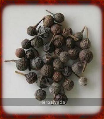 cubeb_dried_peppercorns