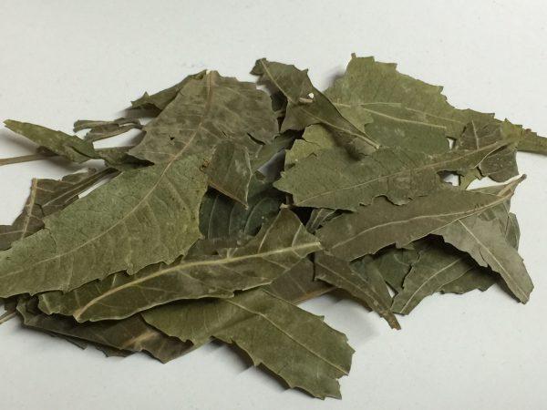 Org Neem Leaves